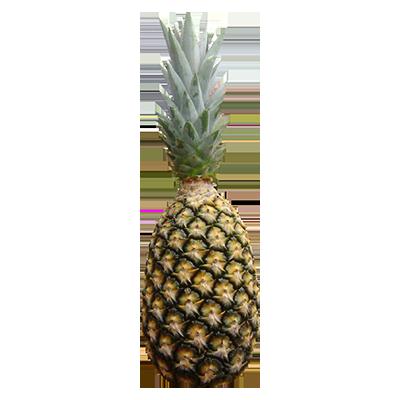 Abacaxi Pérola por Kg SuperFruta  KG
