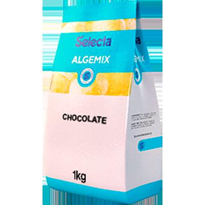 Saborizante para Sorvete sabor Chocolate 800g Algemix pacote UN