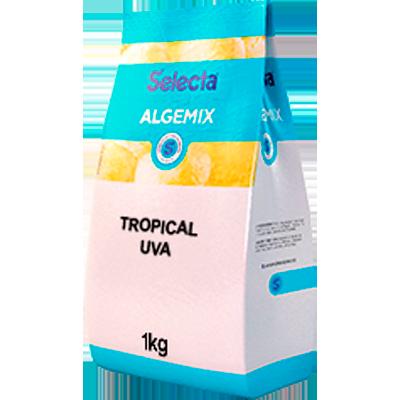 Saborizante para Sorvete sabor Tropical Uva 1kg Algemix pacote UN