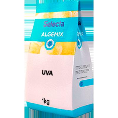 Saborizante para Sorvete sabor Uuva 1kg Algemix pacote UN