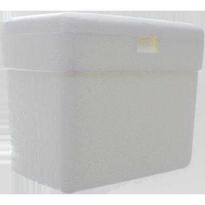Caixa de isopor Térmica 3 Litros unidade Isoterm  UN