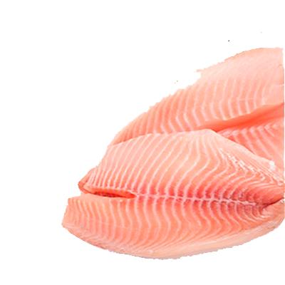 Filé de Tilápia (Saint Peter) congelado (filés de 120 a 150g) Frigofish por Kg KG
