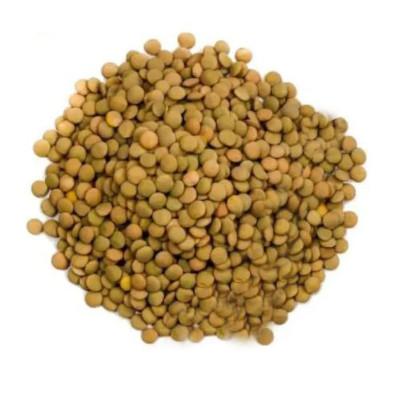 Lentilha canadense por kg Empório Gênova a granel KG
