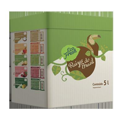 Raizes do Brasil tapioca com coco 5kg Eco Fresh  UN